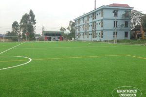 Sân bóng đá cỏ nhân tạo Như Quỳnh Hà Nội